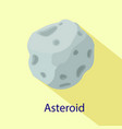 space asteroid icon flat style vector image