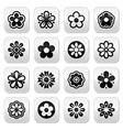 Flower head buttons set vector image