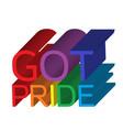 got pride banner vector image