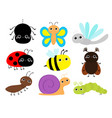 insect set beetle ladybug ladybird dragonfly ant vector image vector image