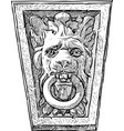 lion snout with a ring vector image