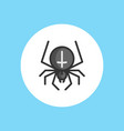 spider icon sign symbol vector image
