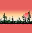 stony desert the sunset vector image
