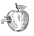 apple fruit with tap engraving vector image vector image