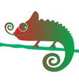 chameleon 3 vector image