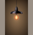 decorative edison light bulb with chandelier vector image vector image