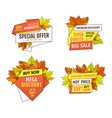 exclusive offer buy now labels maple oak leaves vector image