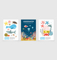 flat colorful underwater life brochures vector image