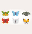 set of colorful butterfly design vector image vector image
