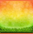 summer banner with grass border vector image vector image