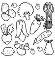 vegetable object doodles vector image vector image
