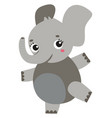 dancing elephant on white background vector image vector image