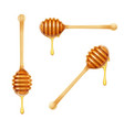 honey dipper set of wooden vector image