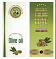 olive oil green labels vector image vector image