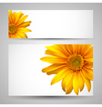 Flower background templates vector image
