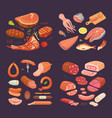 collection of different meat product set cartoon vector image vector image