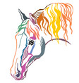 colorful decorative portrait of horse vector image vector image