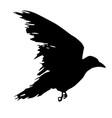corbie vector image
