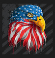 eagle head with american flag pattern vector image