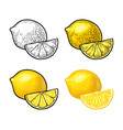 lemon slice and whole color vintage vector image vector image