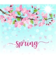 spring lettering blossoming tree brunch vector image vector image
