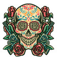 sugar skull with a gun and a rose vector image