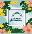 summer tropical background vector image vector image