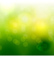Abstract natural light background vector image