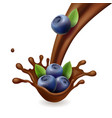 blueberry in liquid chocolate vector image vector image