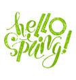 fhrase hello spring vector image vector image