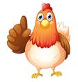 A hen vector image