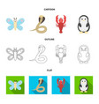 an unrealistic cartoonoutlineflat animal icons vector image