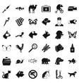 animal medicine icons set simple style vector image vector image
