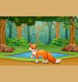 fox cartoon living in jungle vector image vector image