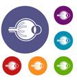 human eyeball icons set vector image