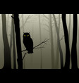owl in the misty woods vector image vector image