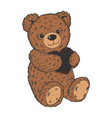 teddy bear color sketch engraving vector image vector image