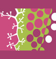 abstract fruit design with grapes vector image vector image