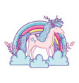 beautiful little unicorn in clouds and rainbow vector image