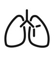 lungs organ breathing system medical and health vector image