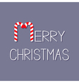 Merry Christmas Candy Cane text Flat design Violet vector image vector image