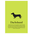 dog dachshund silhouette poster vector image