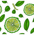 seamless pattern with bergamot colorful wallpaper vector image vector image