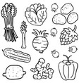 various vegetable of doodles hand draw vector image vector image