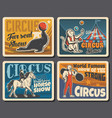 circus chapiteau and carnival show retro posters vector image vector image
