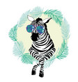 fashion portrait of funky zebra vector image vector image