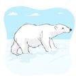 big polar bear in arctic tundra vector image