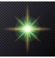 Light Color Glow Flare Star Effect vector image