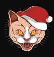 cat angry face with christmas santa claus hat vector image vector image