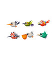 cute cartoon colorful exotic flying little birds vector image vector image